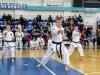 Karate pervenstvo_20170305_102429