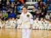 Karate pervenstvo_20170305_103733